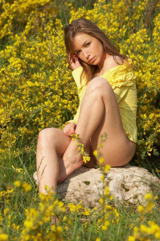Эротика Darina в поле с желтыми цветами (22 фото)