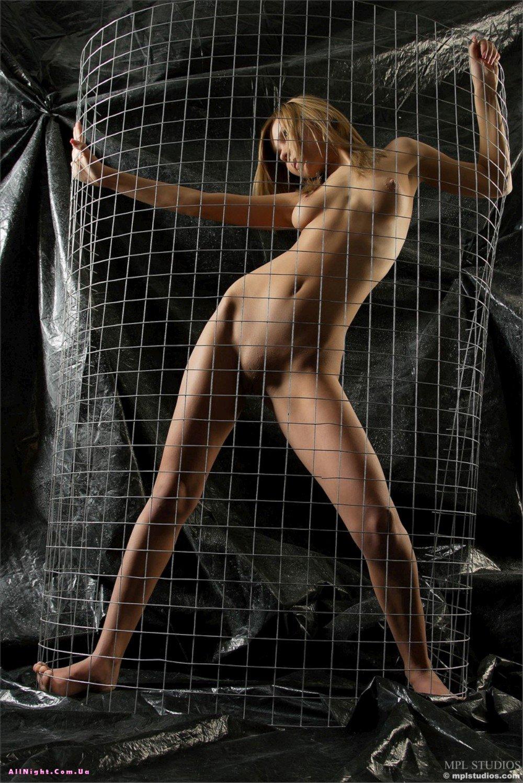 Сучки в клетке 9 фотография