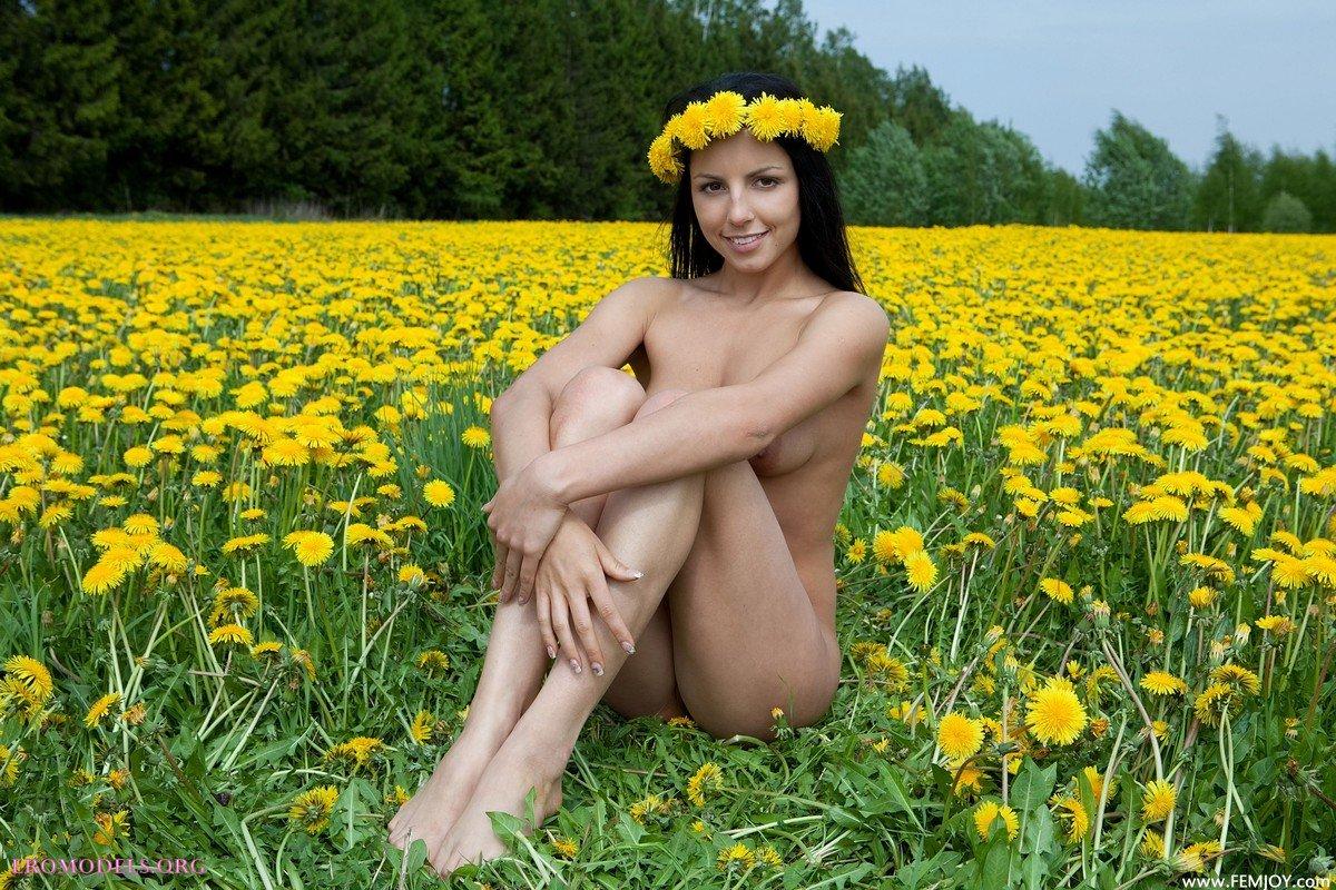 Эротика в поле фото 15 фотография