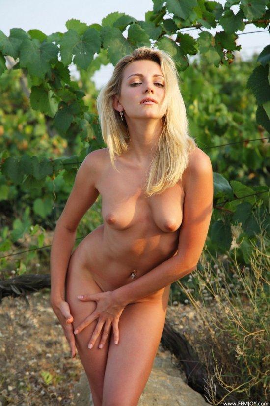 Блондинка Teya на плантации винограда (14 фото)