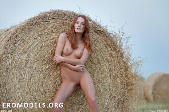 Denisa раскрыла красоту жанра эротики (18 фото)