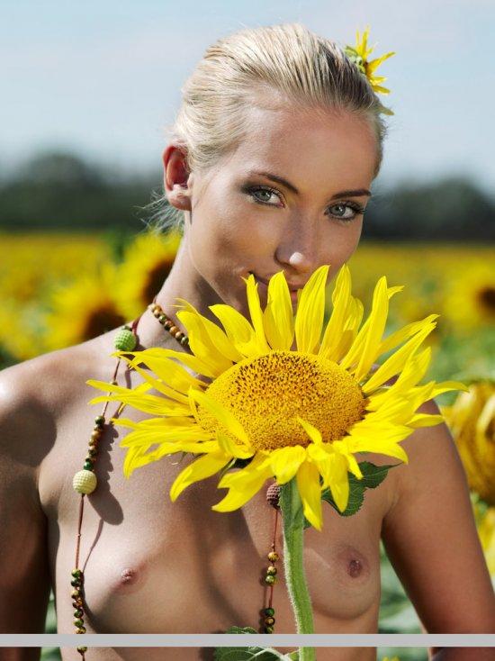 Adel в поле с цветущими подсолнухами (15 фото)
