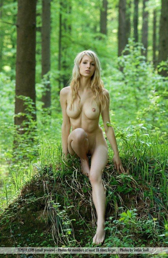 Ню в лесу фото