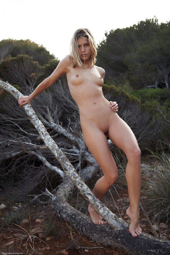 Остановившаяся перед поваленным деревом Iveta (30 фото)