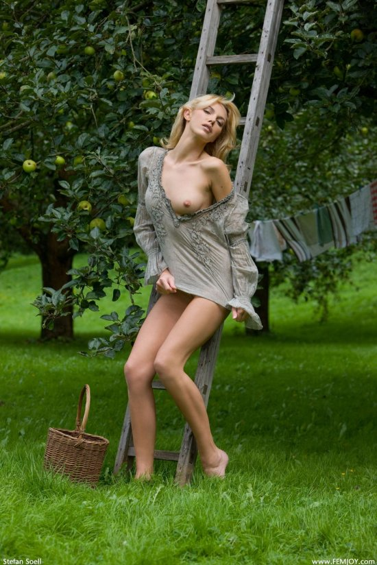 Превратившая в откровение сбор созревших яблок Lilly (14 фото)