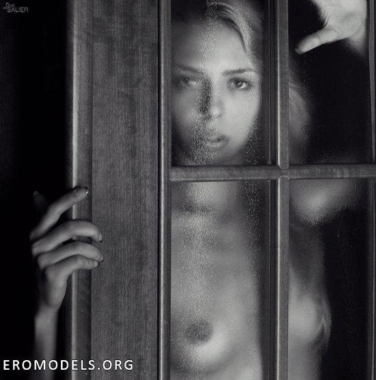 Поданная со стороны искусства эротика Дюка де Салье (45 фото)
