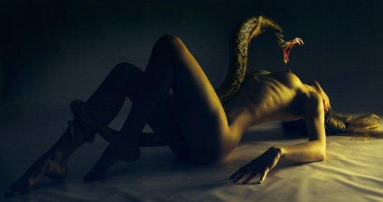 Эротика с опасными змеями (50 фото)